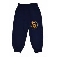 Спортивные брюки /начес - Арт.: 490