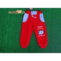 Спортивные штаны (с начесом) - Арт.: 507