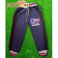 Спортивные брюки начес - Арт.: 1111